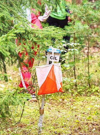 Flag Route Marker on the orienteering race track. Control point in a forest