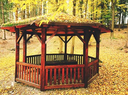 Nice wooden hikers shelter or pavilion in autumnal forest. Light colorful place for hiking travelers. Environment protect of nature Reklamní fotografie