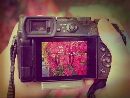 Digital camera with touchtable display on autumn leaves background.  Abstract filter.