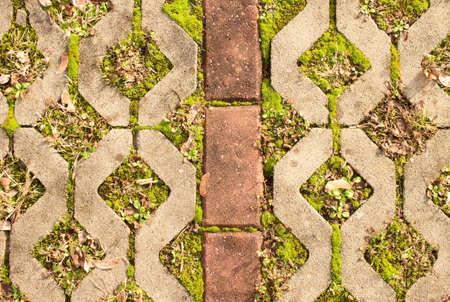 Stone sidewalk in variation with a green grass as a background.