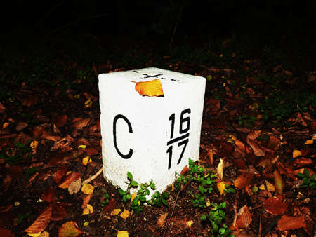 Boundary marker stone or national border stone between the Germany and Czechia. Night misty autumn forest