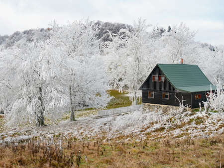 Cottages in early winter scenery with amazing hoarfrost cover in hills ar low mountain on sunny November morning. Leaves and spruce trees covered with snow and frost on a mountain slope.