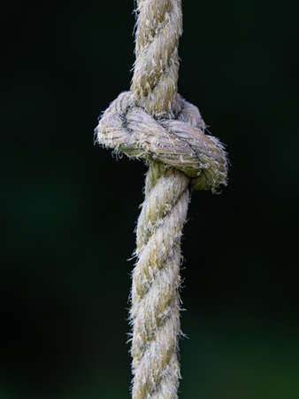 Rope ring knot hanging on wooden beam, trees in blurry background