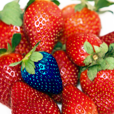 One different strawberry of a group of fresh, succulent strawberries  photo