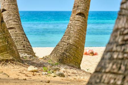 White beach of Boracay island. Tourists sunbathe on the beach under palm trees