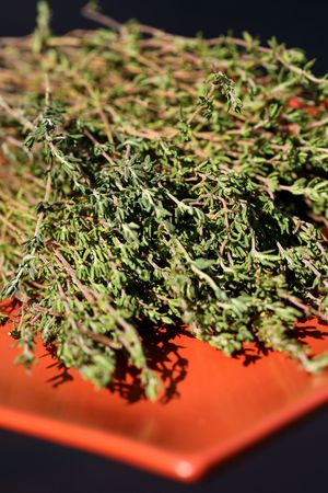 Dry Thyme Stock Photo - 2307606