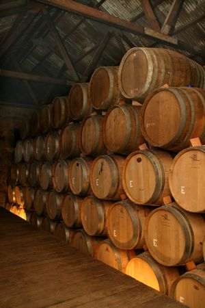 Wine aging in oak casks, Valle de Guadalupe, Mexico
