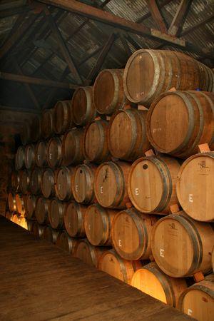 Wine aging in oak casks, Valle de Guadalupe, Mexico