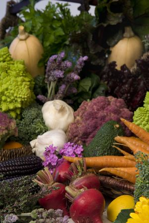 Freshly picked, organically grown fruits and vegetables