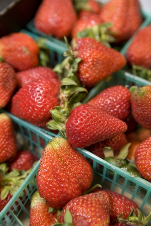 Red, perfectly ripe strawberries in green plastic baskets at the farmers market.