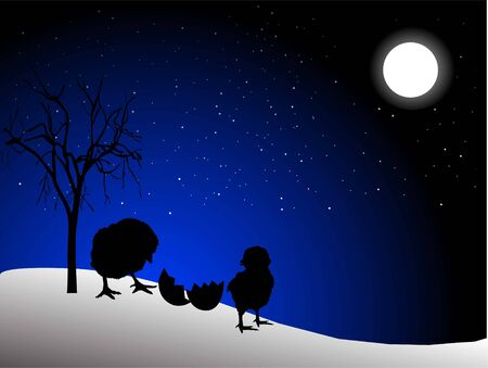 chicken with moon and stars Stock Photo - 3308452