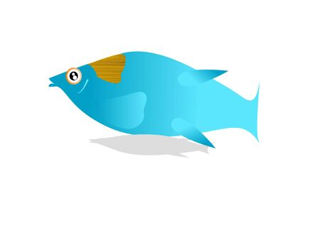 little fish on isolated background  Banco de Imagens