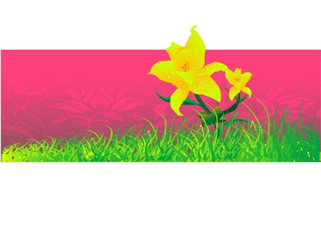 flower in grass on floral background
