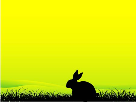 rabbit sitting in grass on gradient background