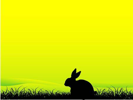Konijn zitten in gras op gradiënt achtergrond Stockfoto - 3308964