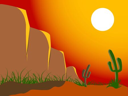 cactus and rocks on landscape