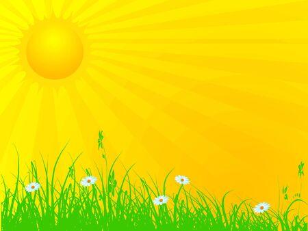 sun rays falling on land  Banco de Imagens