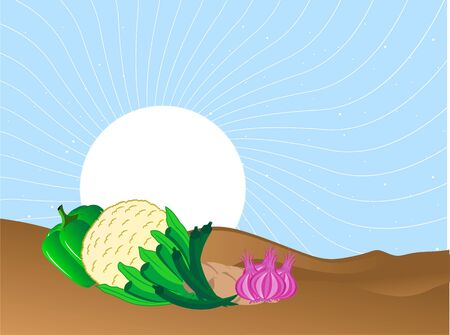 fresh vegetables  on sunny background