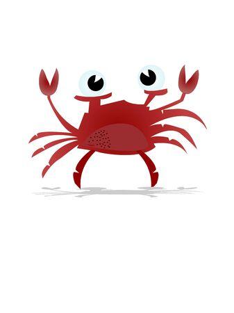 single crab on isolated background