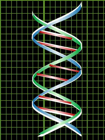 dna structure on graph   photo