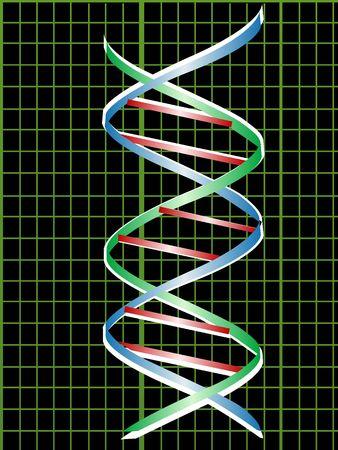 la estructura del ADN en el gráfico  Foto de archivo - 3309659