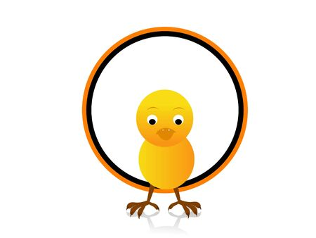 isolated chick in circle   photo