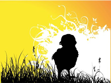 silhouette of chicken on grass
