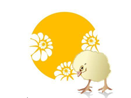 chicken on floral background     photo