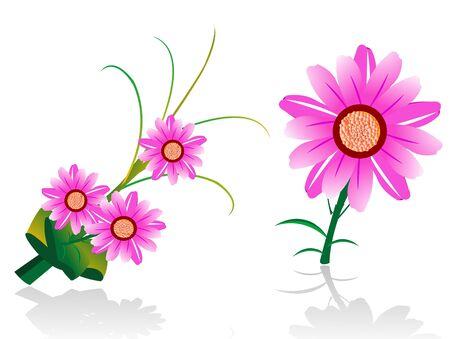 bloem boeket op geïsoleerde achtergrond