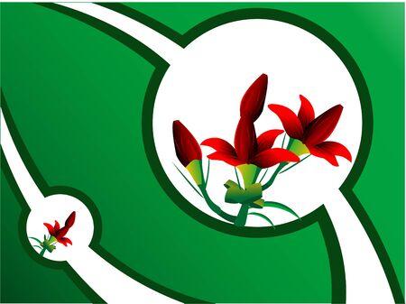 bloemen op abstracte achtergrond   Stockfoto