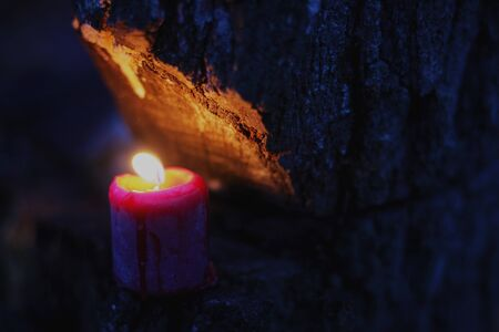 Red Burning Candle inside of a Tree Stok Fotoğraf
