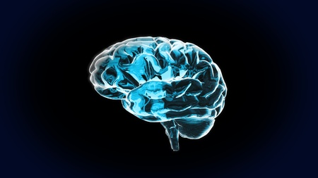 Pure Crystal Brain is the best way for any medical theme.IQ concept, the idea of CPU processing . photo