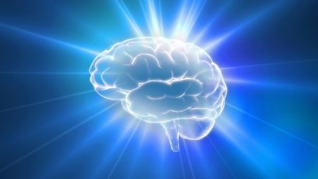 Blue brain outline flares is the best way for any medical theme.IQ concept, the idea of CPU processing. photo