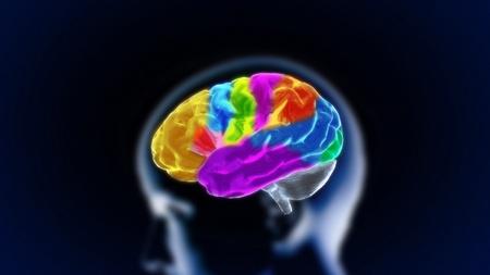 COGNICION: el render del cerebro de cristal para el concepto de medicina y biología