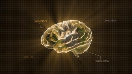 right ideas: el render del cerebro de cristal para el concepto de medicina y biolog�a