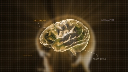 the crystal brain render for medical and biology concept photo