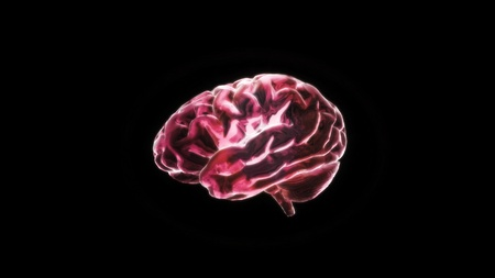 the crystal brain render for medical and biology concept Stock Photo - 12403222
