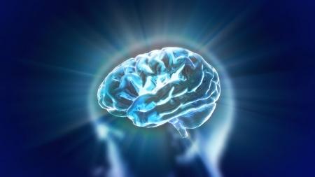 X-ray Brain to represent the theme biology, intelligent,technology Stock Photo - 13628239