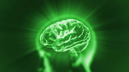 X-ray Brain to represent the theme biology, intelligent,technology Stock Photo - 13628231