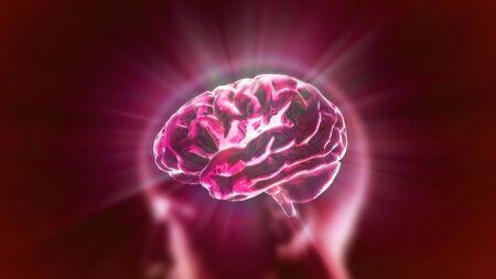 X-ray Brain to represent the theme biology, intelligent,technology Stock Photo - 13628235