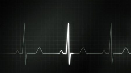 bp: The graphic of EKG monitor for medical theme