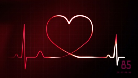 ekg: heartbeat graphic of EKG monitor represent of love