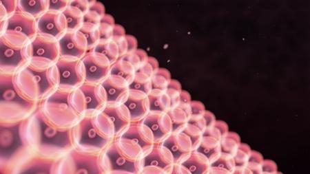 multiplicacion: Resumen ilustración de las células en mitosis y la multiplicación de las células para la belleza y la biología concepto
