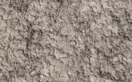 dirt texture: Brown dirt of soil for background texture