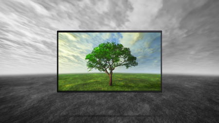 tv panel: led tv display on wild represent the real color technology