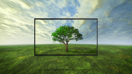 led tv display on wild represent the real color technology