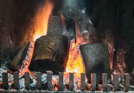 wood burns in fireplace with metallic protection