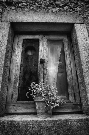 rustic old window with potted plant Stock Photo