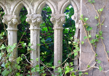 gray pillars and green ivy in a old italian garden