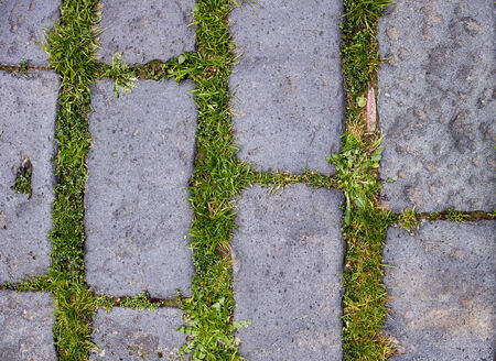 stone floor with green grass Stock Photo